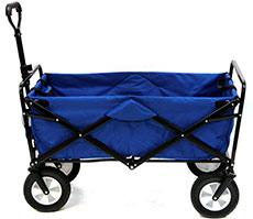 Photo of beach cart